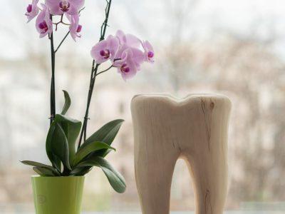 Praxisjubiläum – 1 Jahr Zahnarztpraxis Richard Vetters